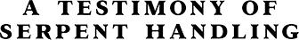 A Testimony of Serpent Handling logo